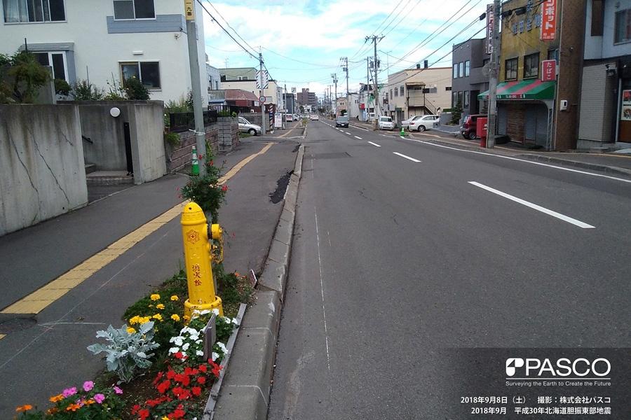札幌市清田区清田六条2丁目~3丁目付近 歩道ブロックの転倒が見られる(写真右方向)こちから、地盤が全体的に谷方向へ移動していると推定される。