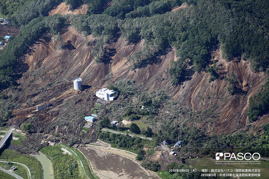 厚真町高丘 斜面崩壊により流下した土砂・倒木