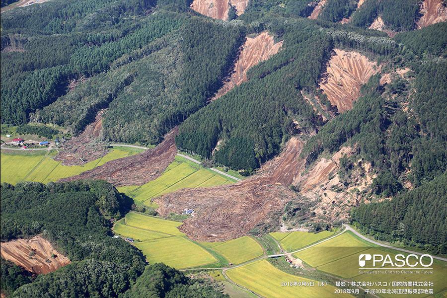 厚真町 稜線付近から斜面崩壊が発生し、土砂・流木が山麓まで土石流化し流出している