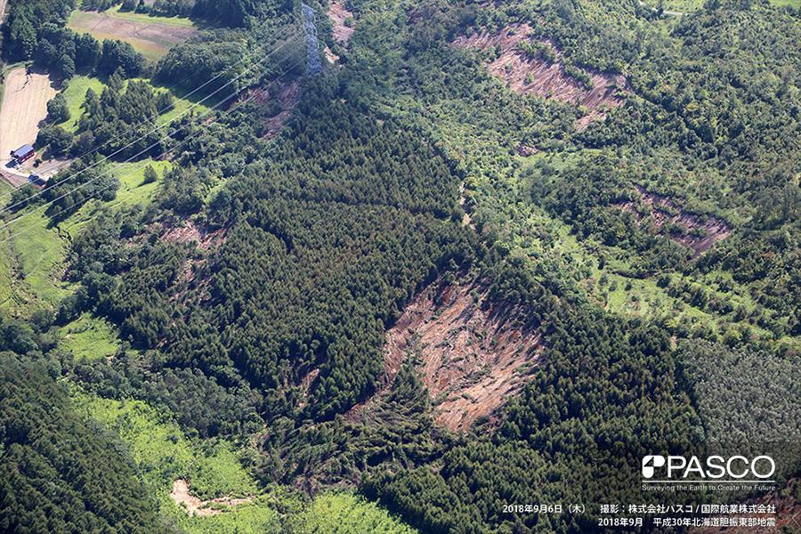 安平町 崩壊した土砂は斜面下方に堆積し、渓流を埋塞している