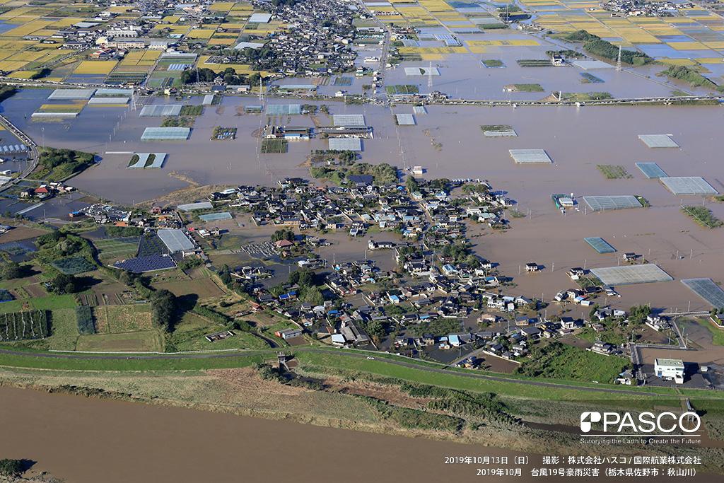 栃木県佐野市: 渡良瀬川左岸側の下羽田町の状況。住宅や水田が広範囲に浸水している。