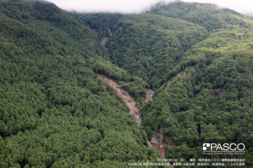 長野県飯田市上村程野付近:斜面に多数の崩壊が発生し土砂や流木が流下している。