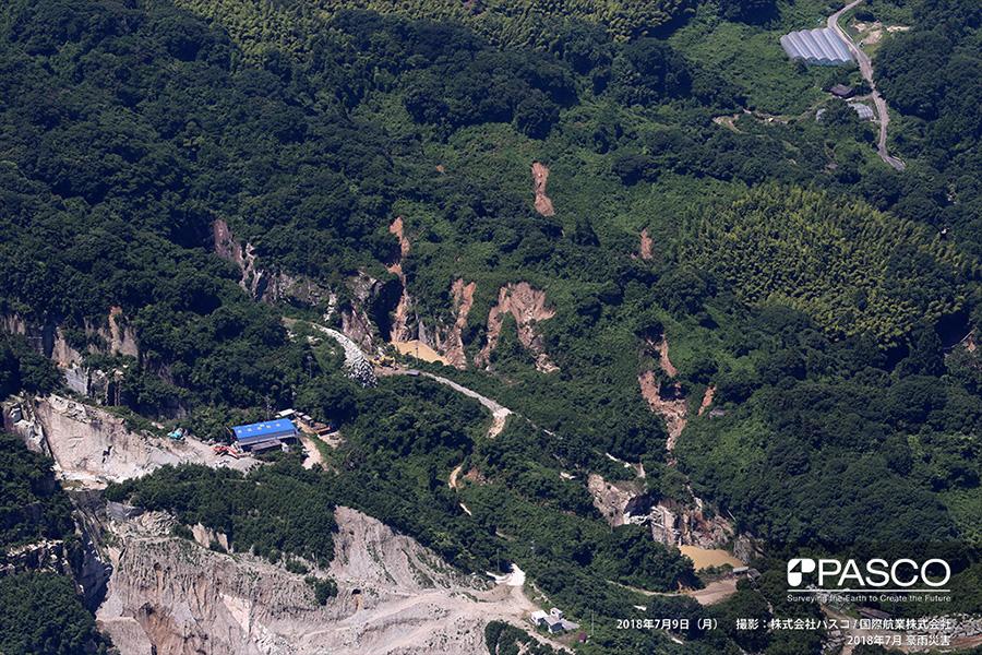 愛媛県今治市宮窪町 斜面崩壊が複数箇所で発生