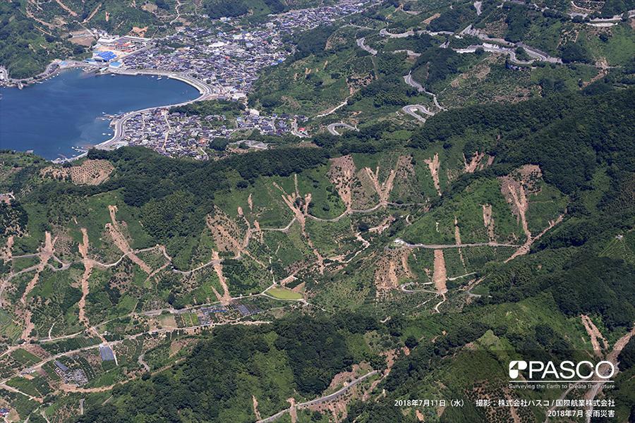 宇和島市吉田町深浦 数多く発生した山地斜面の崩壊