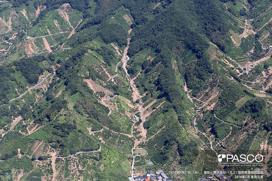 宇和島市吉田町法花津 数多く発生した斜面崩壊と発生した土砂が流下した渓流