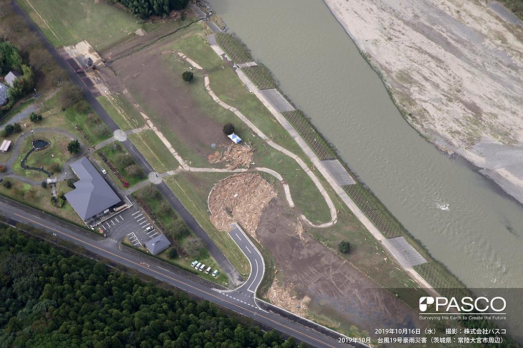 茨城県常陸大宮市 久慈川左岸側高水敷(上流から下流を望む): 高水敷に上流域から流出した大量の流木が集積している。堤防越水の痕跡は見られないが、洪水時高水敷まで水位上昇したことがわかる。