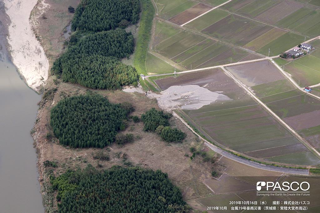茨城県常陸大宮市 久慈川左岸側決壊箇所(下流側から上流側を望む): 久慈川湾曲部上流左岸にて決壊し、堤防材料が流出している。