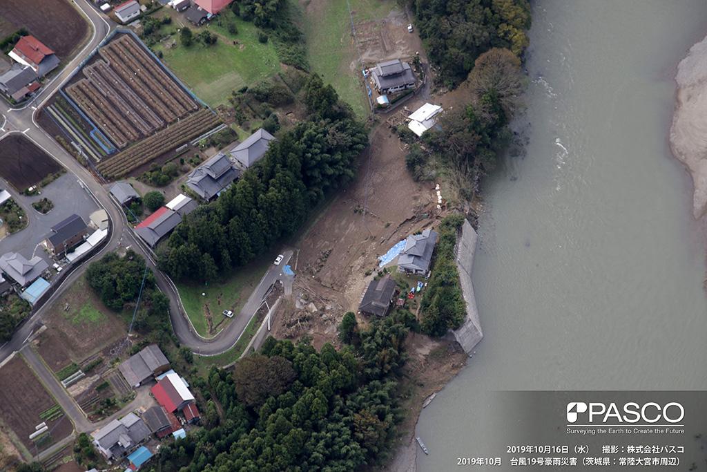 茨城県常陸大宮市 那珂川右岸溢水箇所(右岸下流側から上流側を望む): 那珂川右岸にて溢水し土砂が覆っている。